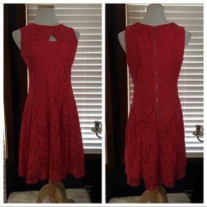 Christopher & Banks Fuchsia Lace Dress 10P
